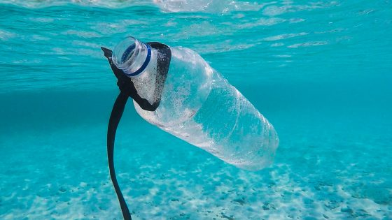 Bottle in ocean which can make recycled plastic furniture